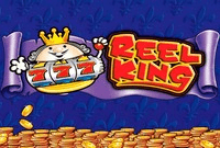 Игровые автоматы 4 Reel Kings