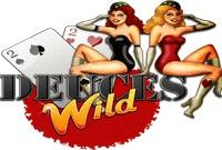 Игровой автомат Deuces Wild