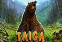 Игровые автоматы Taiga